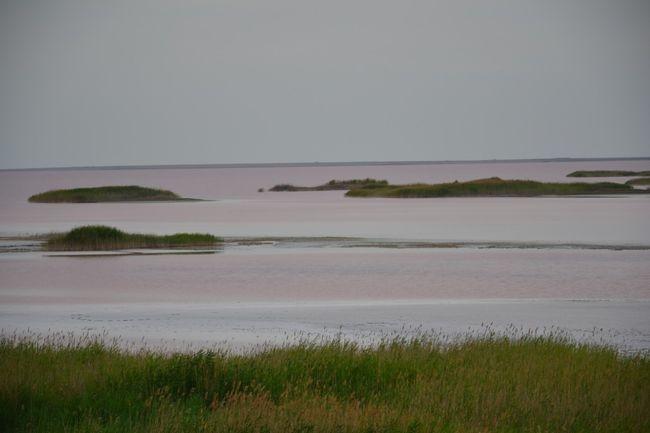 Розовая лагуна: целебное Лемурийское озеро – одно из чудес юга Украины