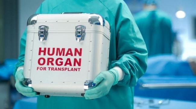 В Украине вступил в силу закон о трансплантации
