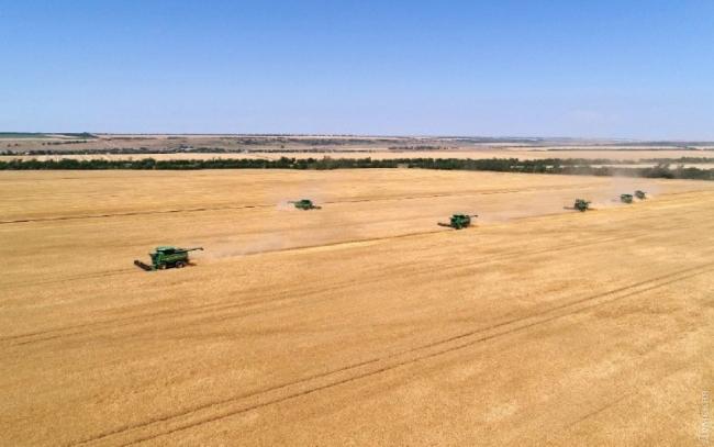 В Одесской области собрали уже почти половину урожая