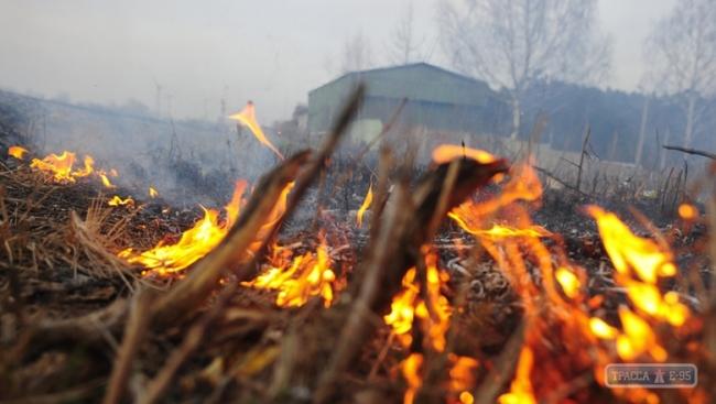 Чрезвычайная пожароопасность объявлена в Одесской области
