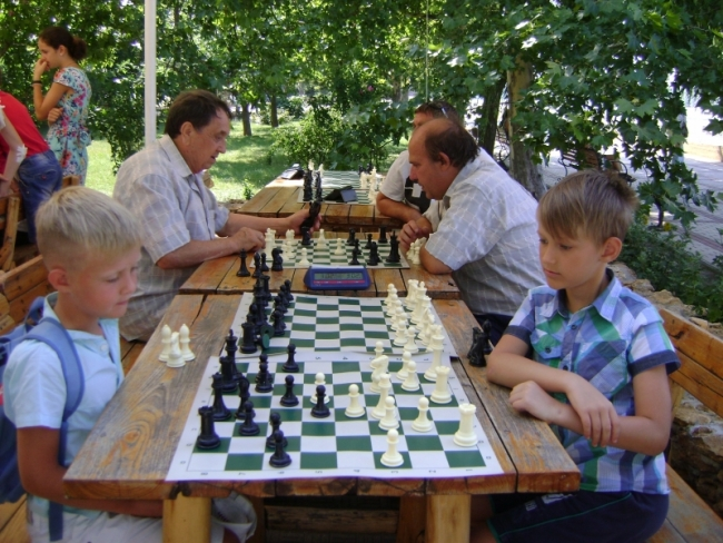 В шахматы играли, Дунай созерцали...