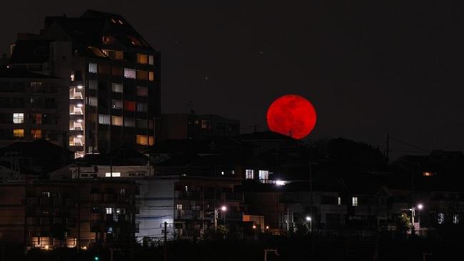 Сегодня украинцы увидят кровавое лунное затмение
