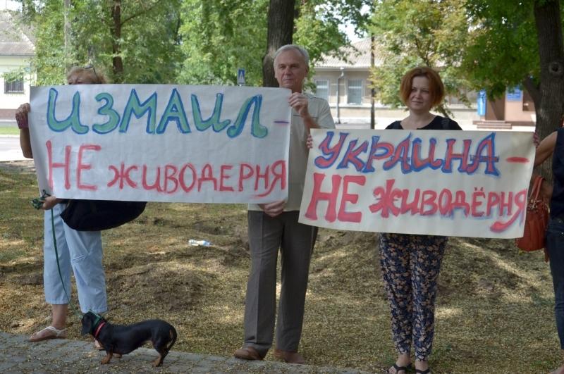 В Измаиле общественники выступили в защиту бездомных животных