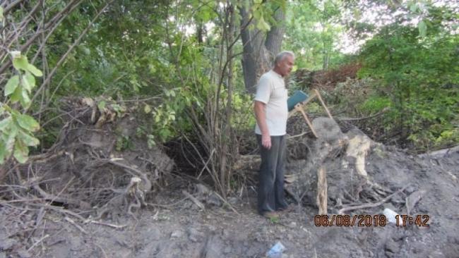 """""""Под технику никто не бросался"""": общественники продолжают бороться за жизнь измаильских деревьев"""