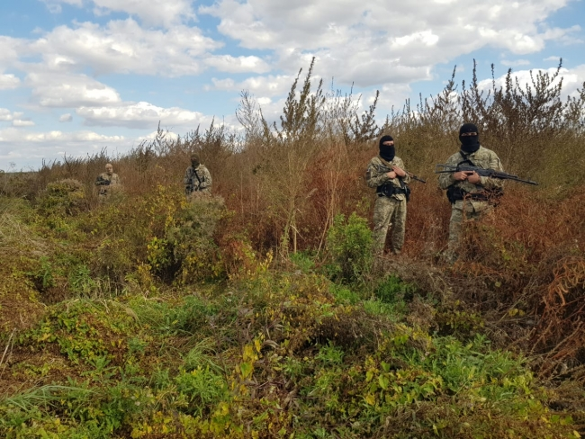 В Одесской области пограничники и полицейские обнаружили наркоплантацию площадью около 1,6 гектаров