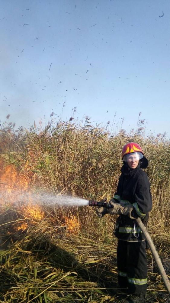 Очаг возгорания - прибрежная зона Лебяжьего озера