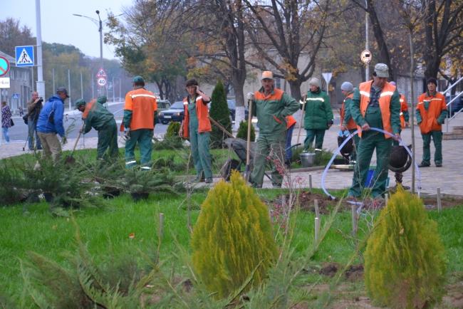 """Более тысячи деревьев и кустарников """"со всей страны"""" прибудут в Измаил"""