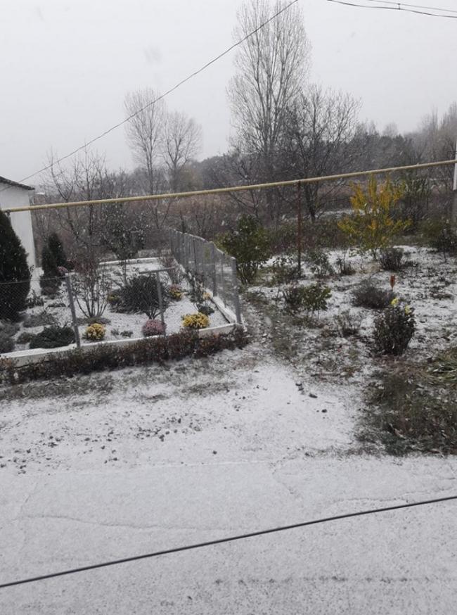 На севере Одесской области выпал первый снег