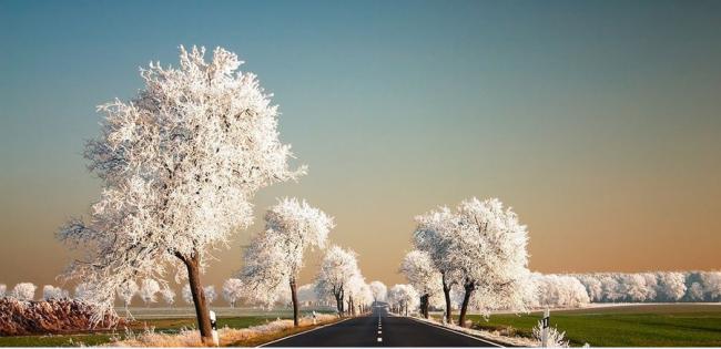 14 изумительных фото, доказывающих, что природа умеет фотошопить