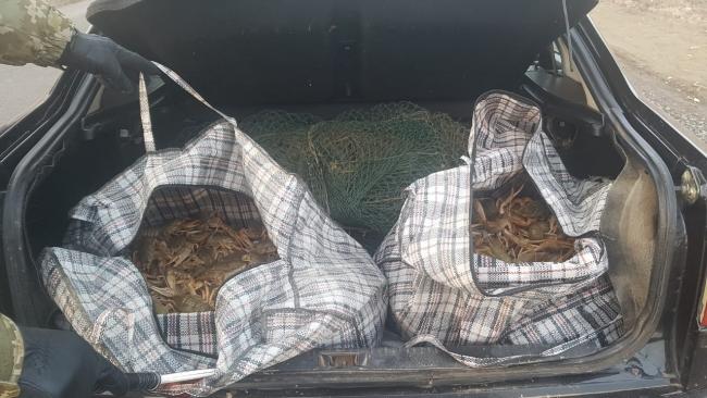 Пограничники обнаружили любителя лова раков в запретный период