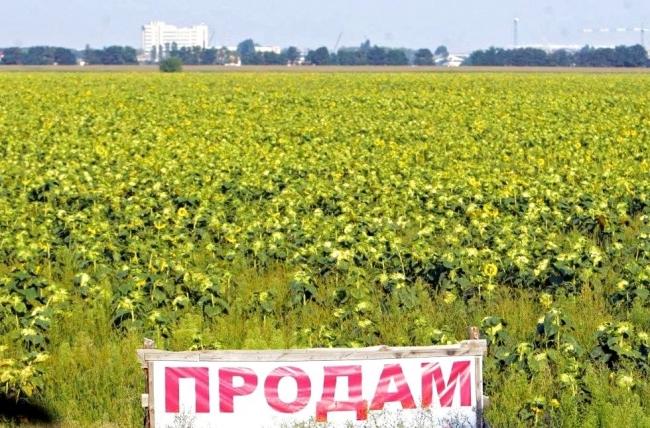 Опубликован закон о продлении моратория на продажу земель