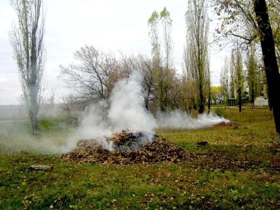 Костры горят весенние…