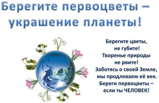 Люди всей планеты, не рвите первоцветы!