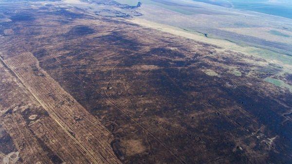Вследствие пожара выгорело 6 тысяч гектаров заповедной Тарутинской степи