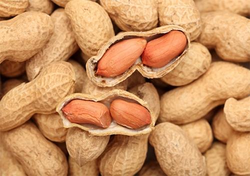 Эксперты назвали орех, который тормозит старение мозга