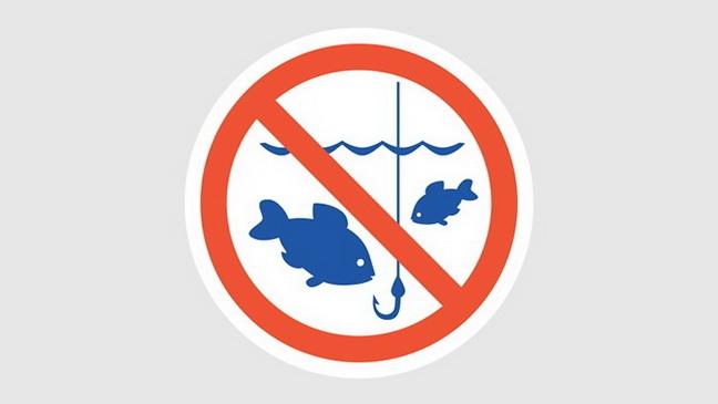 С 1 апреля действует нерестовый запрет на вылов водных биоресурсов