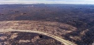 Одесская область вошла в число самых пожароопасных регионов страны