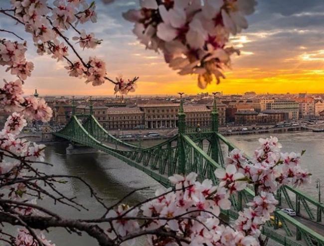 Городские пейзажи, в которые невозможно не влюбиться: крутые фото с дрона
