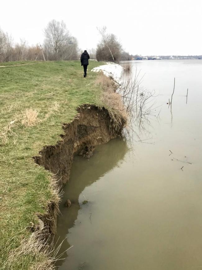 Ренийский горсовет уже восемь лет не может решить вопрос о выделении земли филиалу АМПУ для укрепления берега Дуная