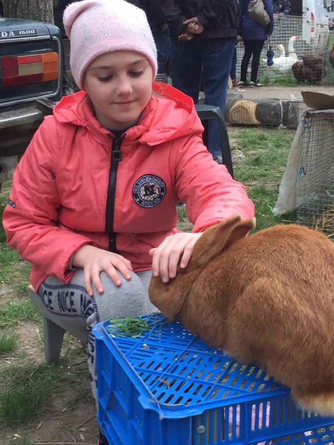 Люди, любите животных!