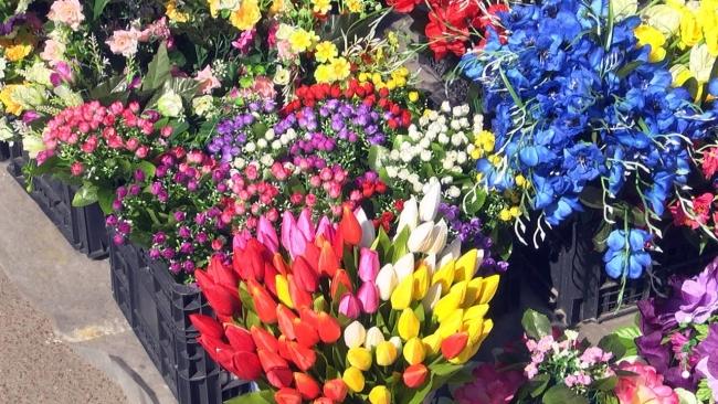 Минприроды призывает не нести на кладбище пластиковые цветы