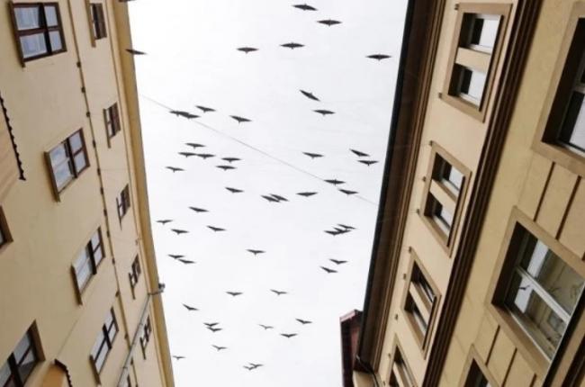 Уникальную воздушную скульптуру установили в Ивано-Франковске
