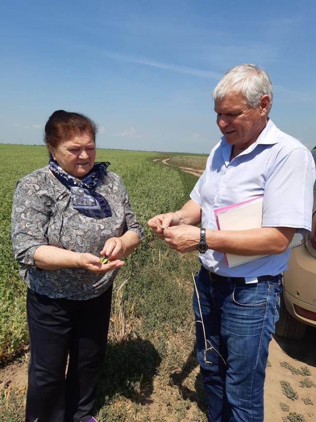 Аграрный бизнес в степях Буджака