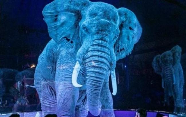 Немецкий цирк отказался от дрессированных животных – их заменили голограммы