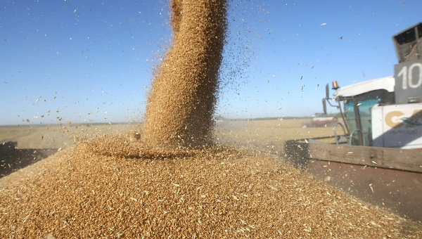 Килийский район завершил уборку ранних зерновых