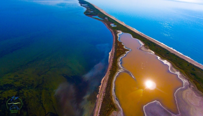 """В """"Тузловских лиманах"""" учёные обнаружили розовые и жёлтые озёра"""