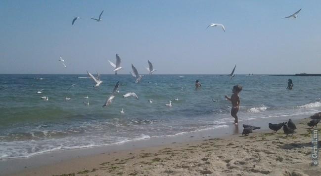 Один из одесских пляжей опасен для здоровья