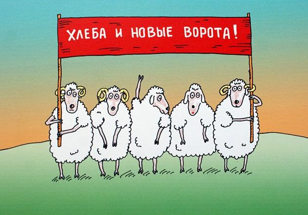 Деградация украинской школы: а нам всё раВНО…