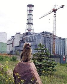 Чернобыль - наша боль и память