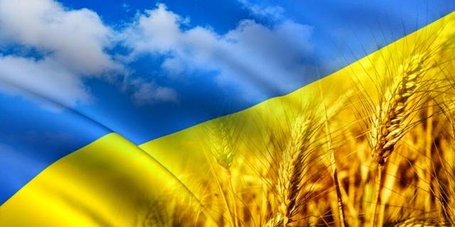 Украинская пшеница стала неконкурентной на ключевом рынке. Названы причины