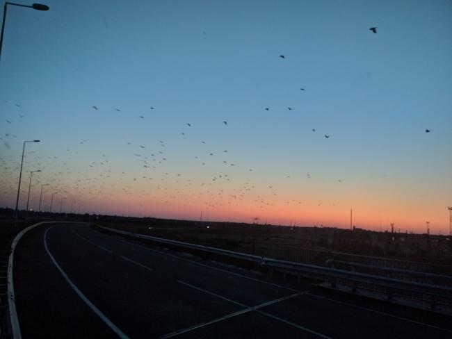 На новой ренийской объездной дороге до сих пор нет освещения