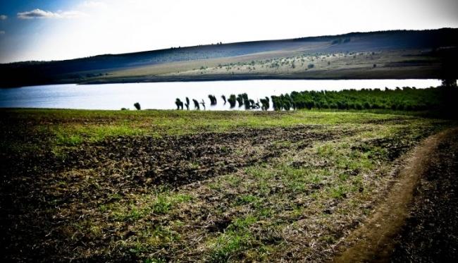 В селе Старая Кульна Подольского района намерены расчистить один из притоков Куяльника
