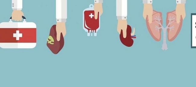 Минздрав анонсировал запуск системы трансплантации в 2020 году