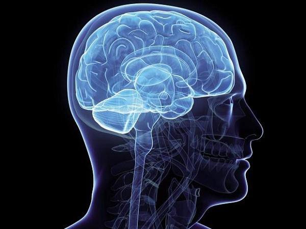 Разработан способ лечения глухоты путём восстановления слуховых клеток