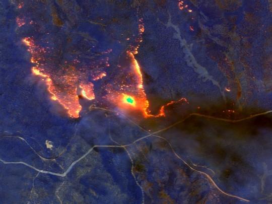 В Австралии выгорела территория, вдвое превышающая площадь Бельгии