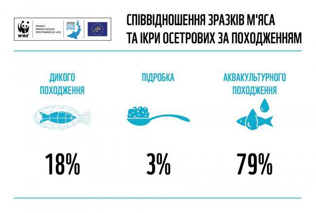18% исследованных образцов черной икры и мяса осетровых на рынке Украины - нелегальные