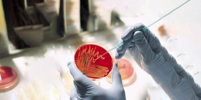 Личные портативные лаборатории будут использовать для диагностики инфекционных заболеваний