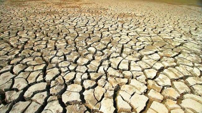 Дефицит воды в реках: Оржель назвал возможную засуху серьезным вызовом для Украины