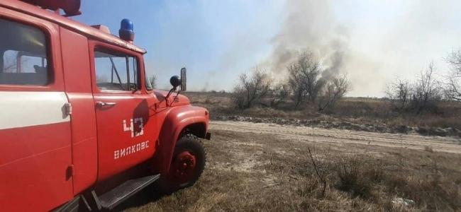 Под Вилково горела территория лесхоза