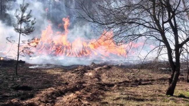 Пожары в Чернобыле нанесли государству миллионные убытки: горят тысячи гектаров