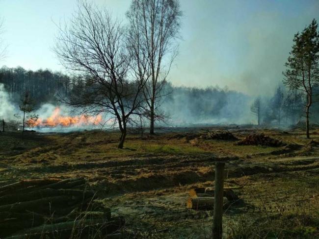 За поджог травы теперь могут оштрафовать на 153 тысячи гривен