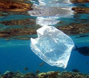 Искусственный интеллект будут использовать для поиска пластика в воде