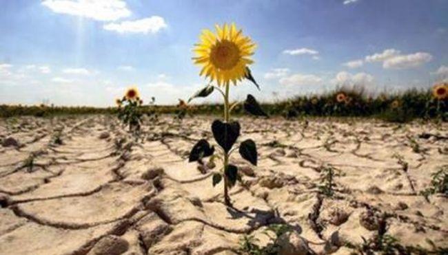 Вопрос воды в Украине стал вопросом нацбезопасности
