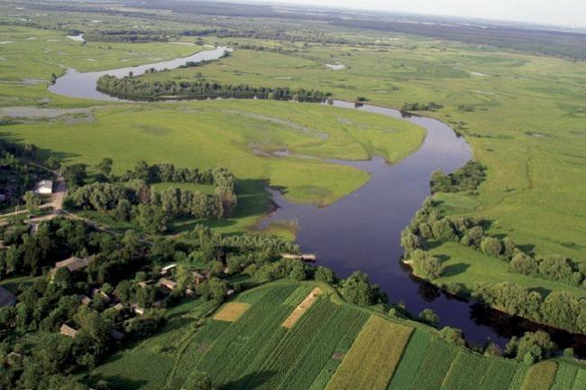 В WWF призывают экоинспекцию срочно заняться проблемами загрязнения рек и водоемов в Украине