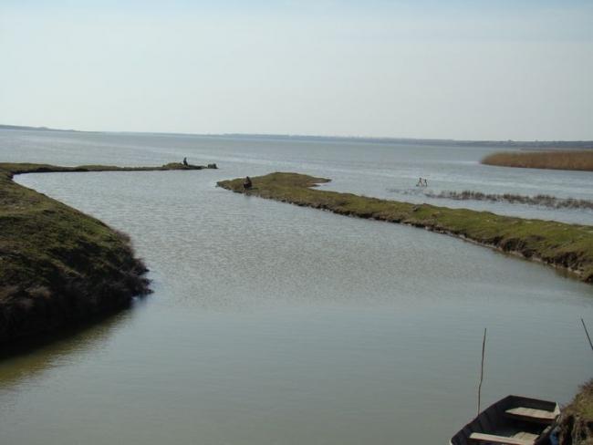 Первый этап работ по восстановлению озера Картал подходит к завершению