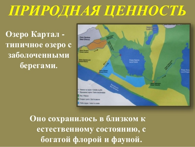 Кто, зачем и для кого заказал заказники в Ренийском районе?